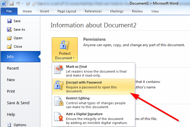 encrypt document with password word