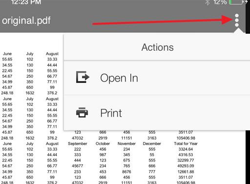 open in pdf ipad