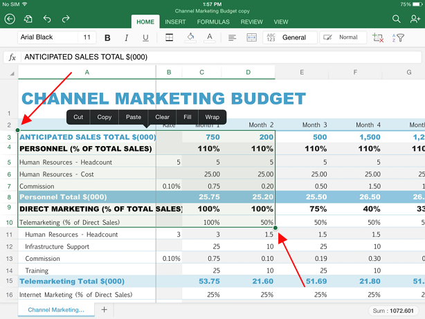 select part of the sheet in excel ipad