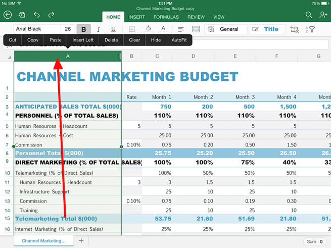 select whole column in excel in ipad